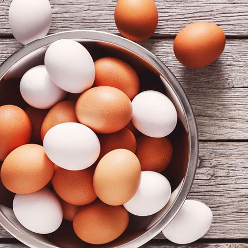 Alles rund ums Hühnereiweiß – Proteingehalt und Nährstoffe