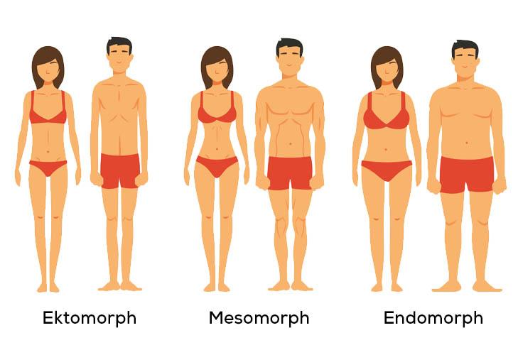 Fettabbau verschiedene Körpertypen